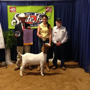 2014 NC State Fair Reserve Champion Doe Showman, Madelyn Chappell is pictured here in the middle with the judge on the left and the goat breeder, John McInnis on the right.