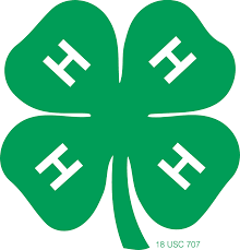 Cover photo for 4-H'ers Honored for Accomplishments
