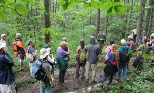 Cover photo for Adding Value to Your Forest Farming-a Weekend Workshop in the Mountains