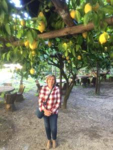 Woman standing under a lemon tree
