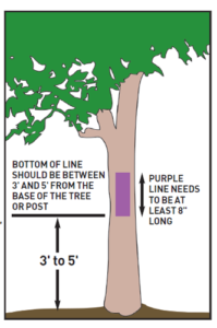Example of how to post their protery as permission needed with purple paint on trees.