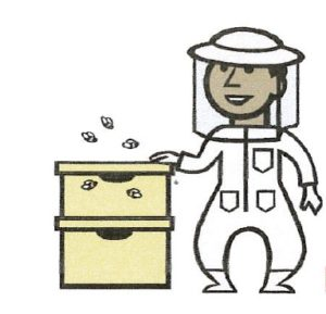 Cover photo for Beekeeper Workshop for Beekeepers and Beginners