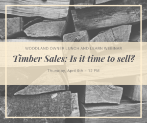 """Photo """"Timber Sales is it time to Sell?"""""""