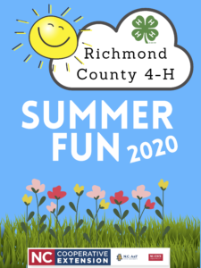 Summer Fun 2020 flyer